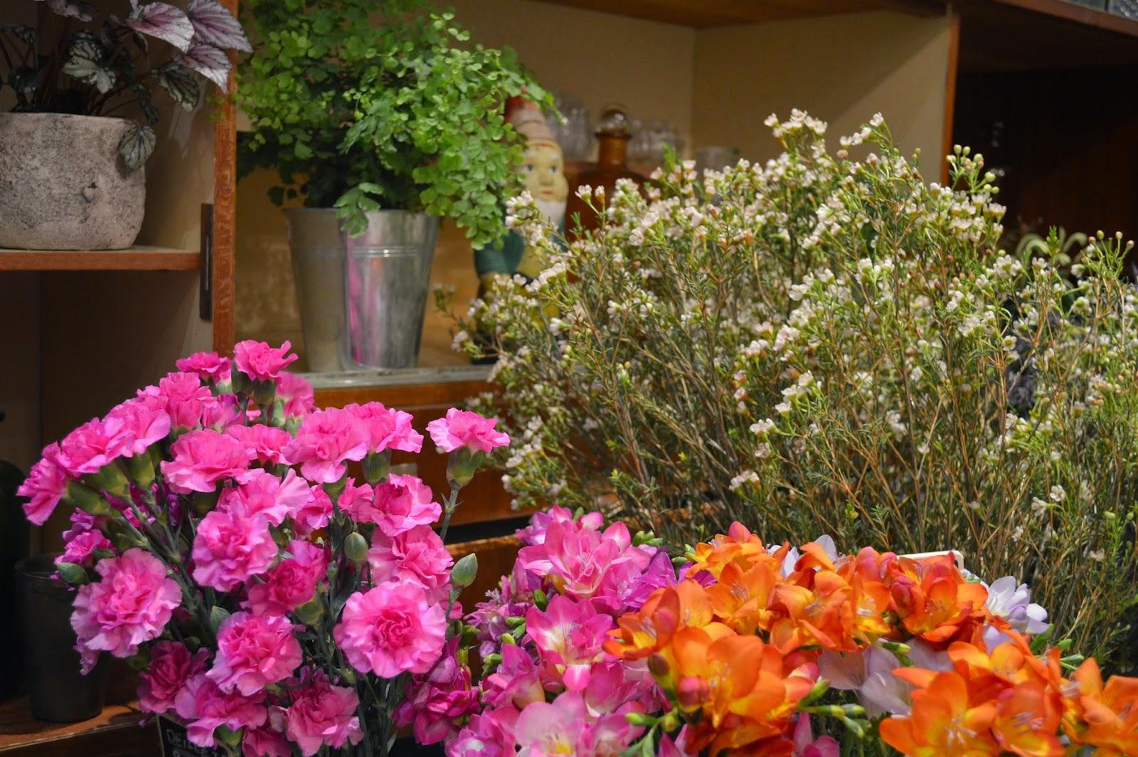 fleuriste Bordeaux centre herbes fauves