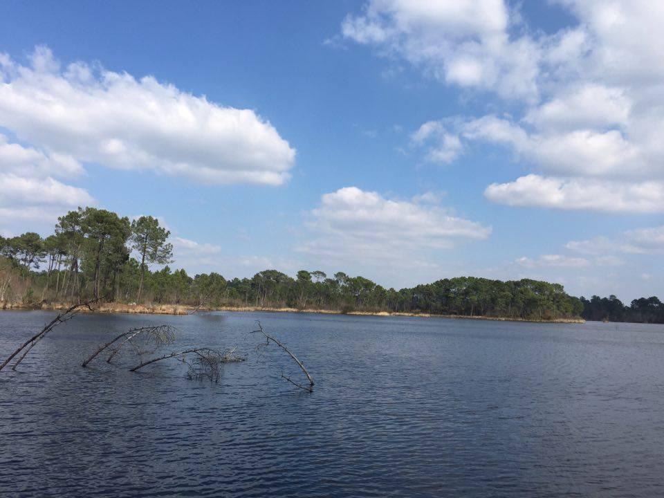 lac d'hostens Landes girondines - Camille In Bordeaux