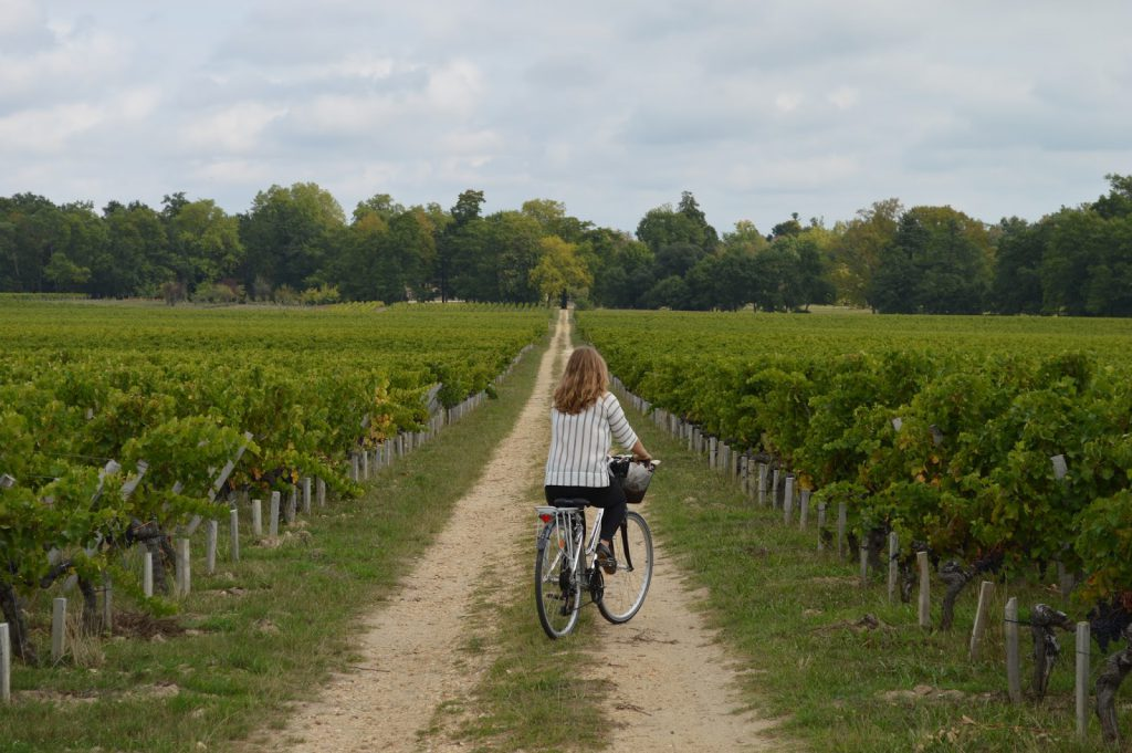 bordovino tour operator vignoble blog camille in bordeaux