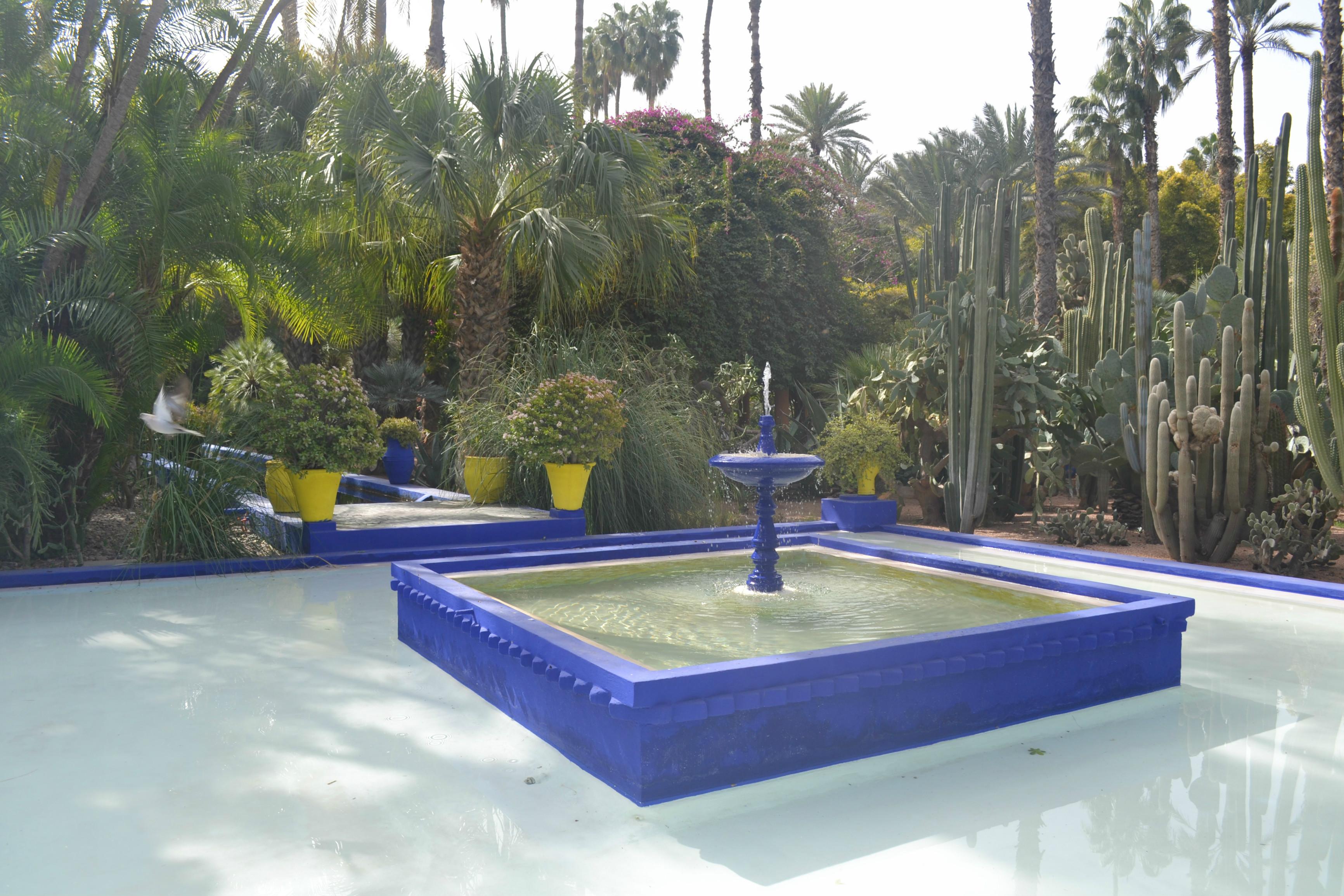 jardin majorelle yves saint laurent marrakech blog camille in bordeaux