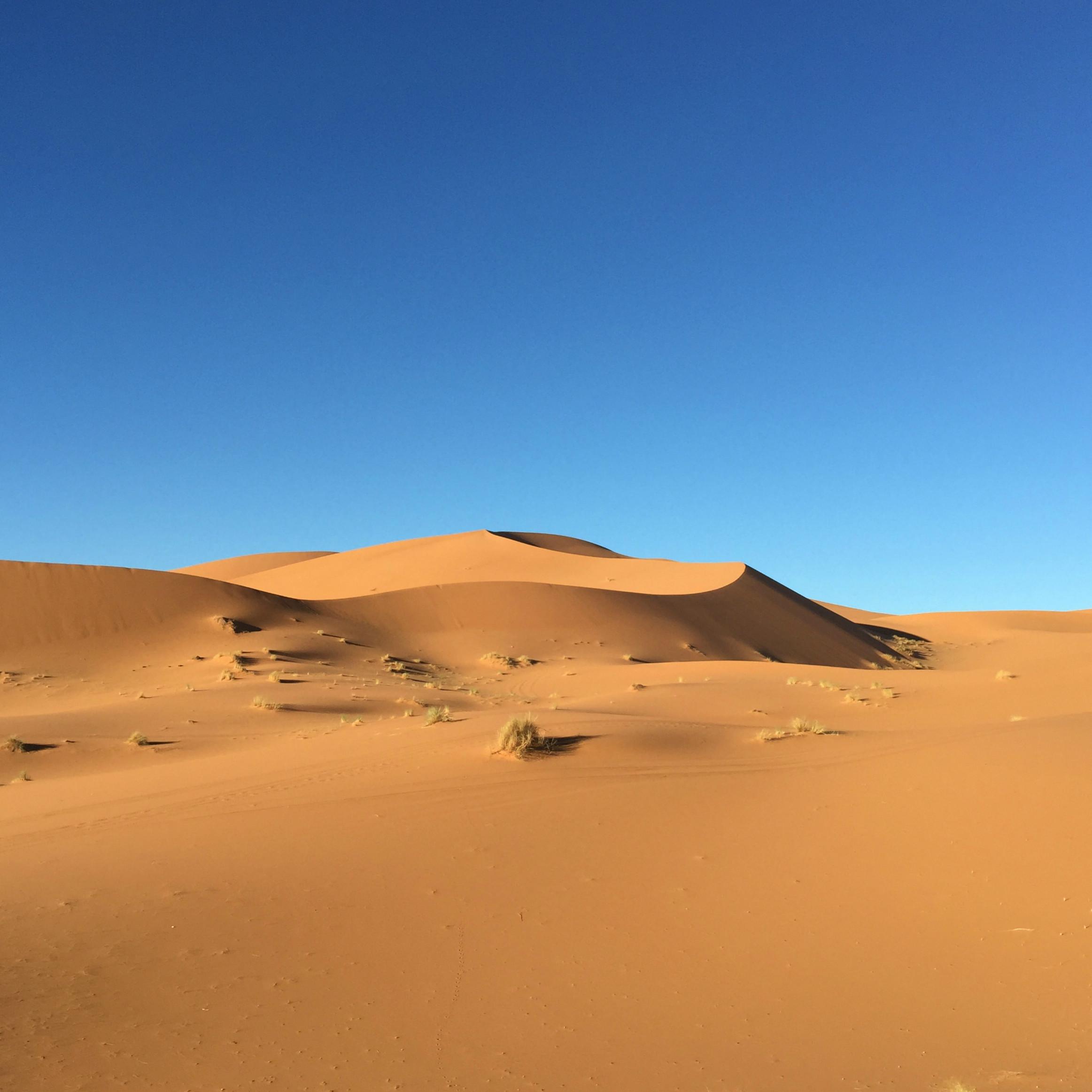 sahara maroc auberges des dunes d'or trek désert blog camille in bordeaux