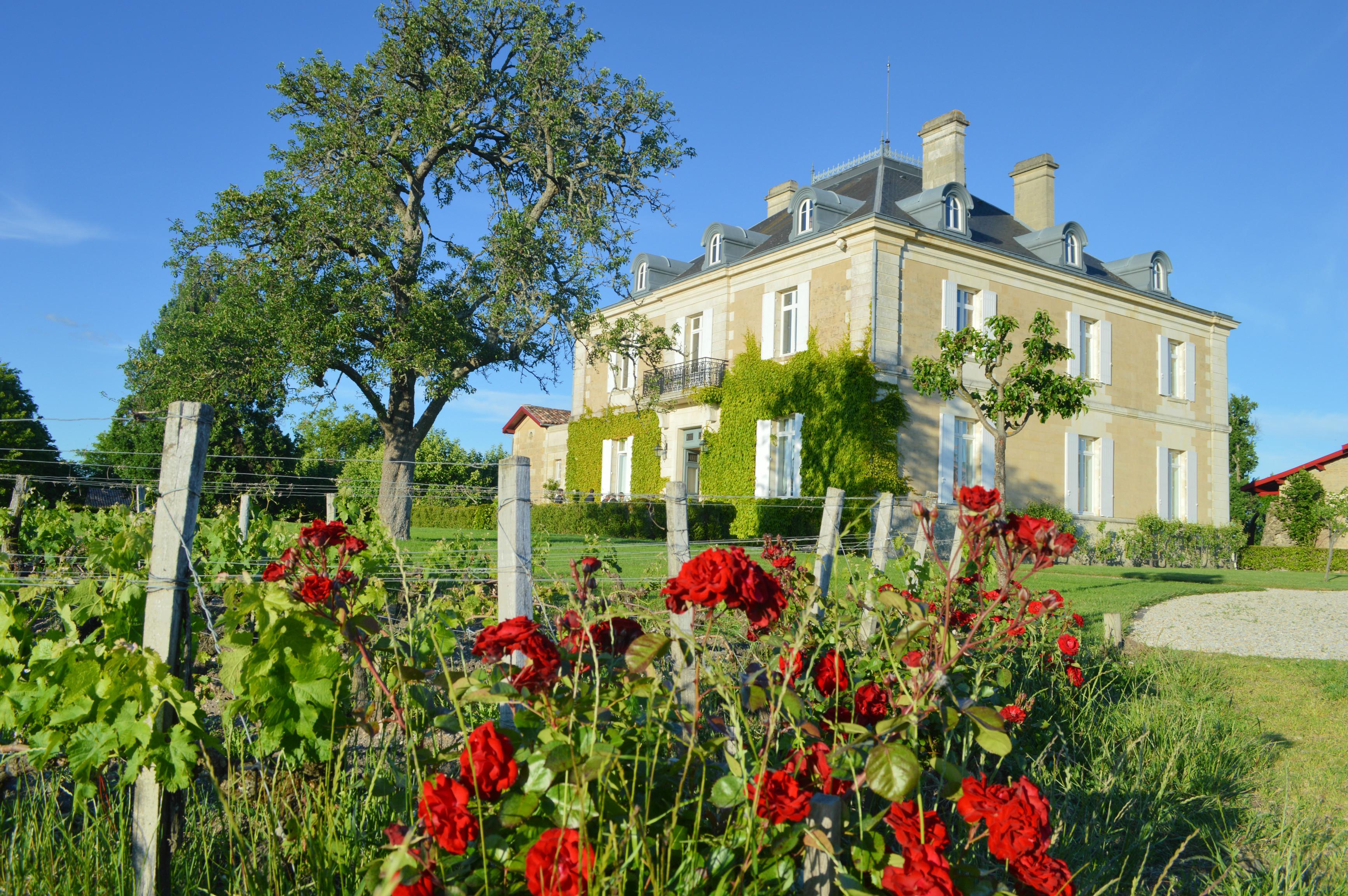 château Haut Bailly Sur la route des vins de Bordeaux en Graves et Sauternes (36)
