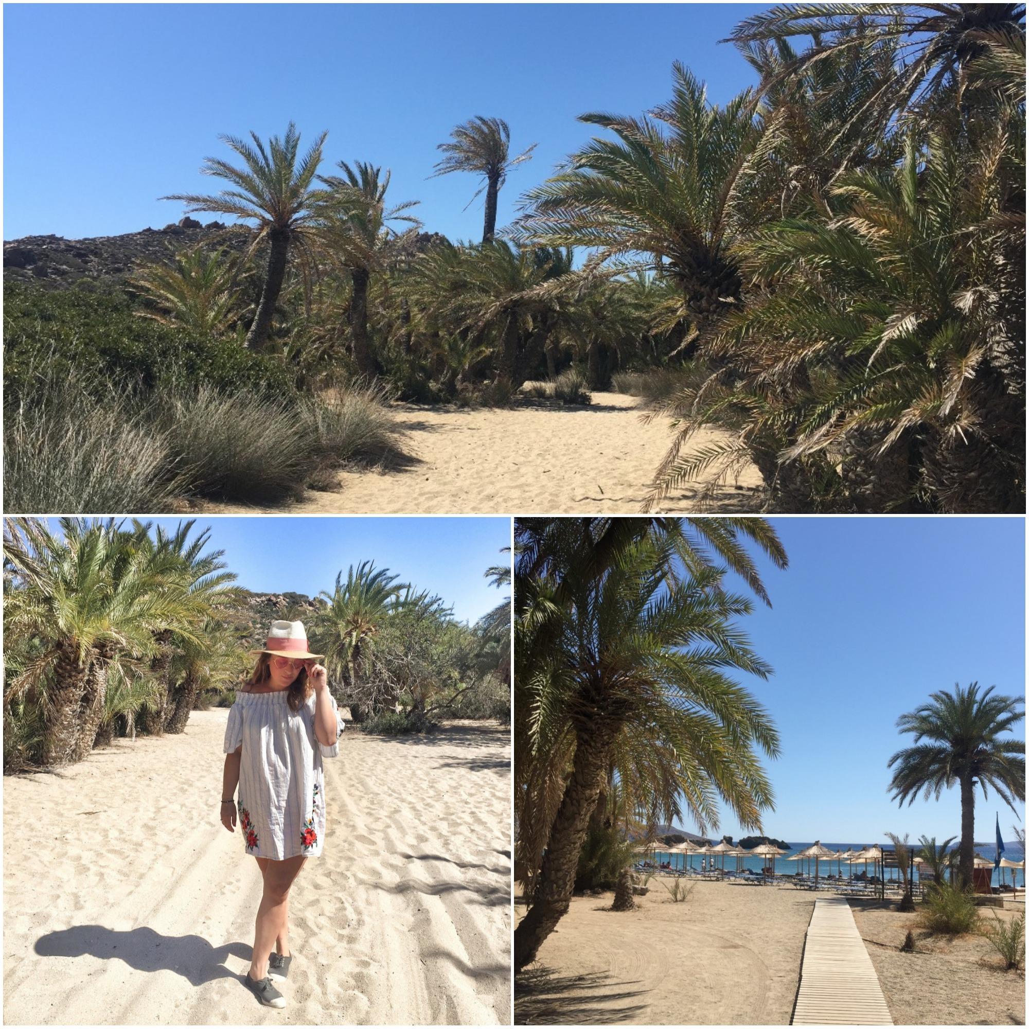 palmeraie de Vai plage crète