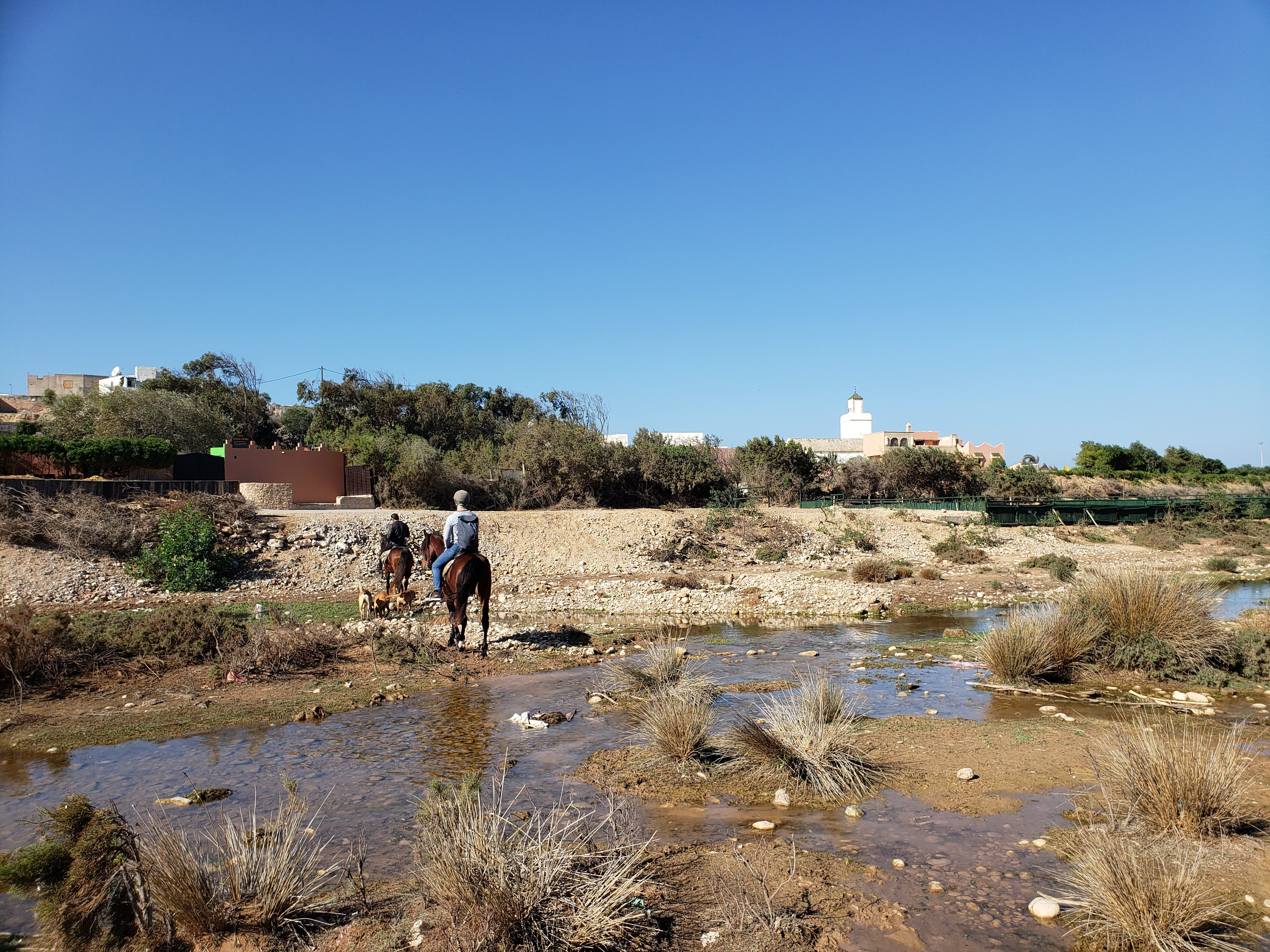 Essaouira ranch équi evasion