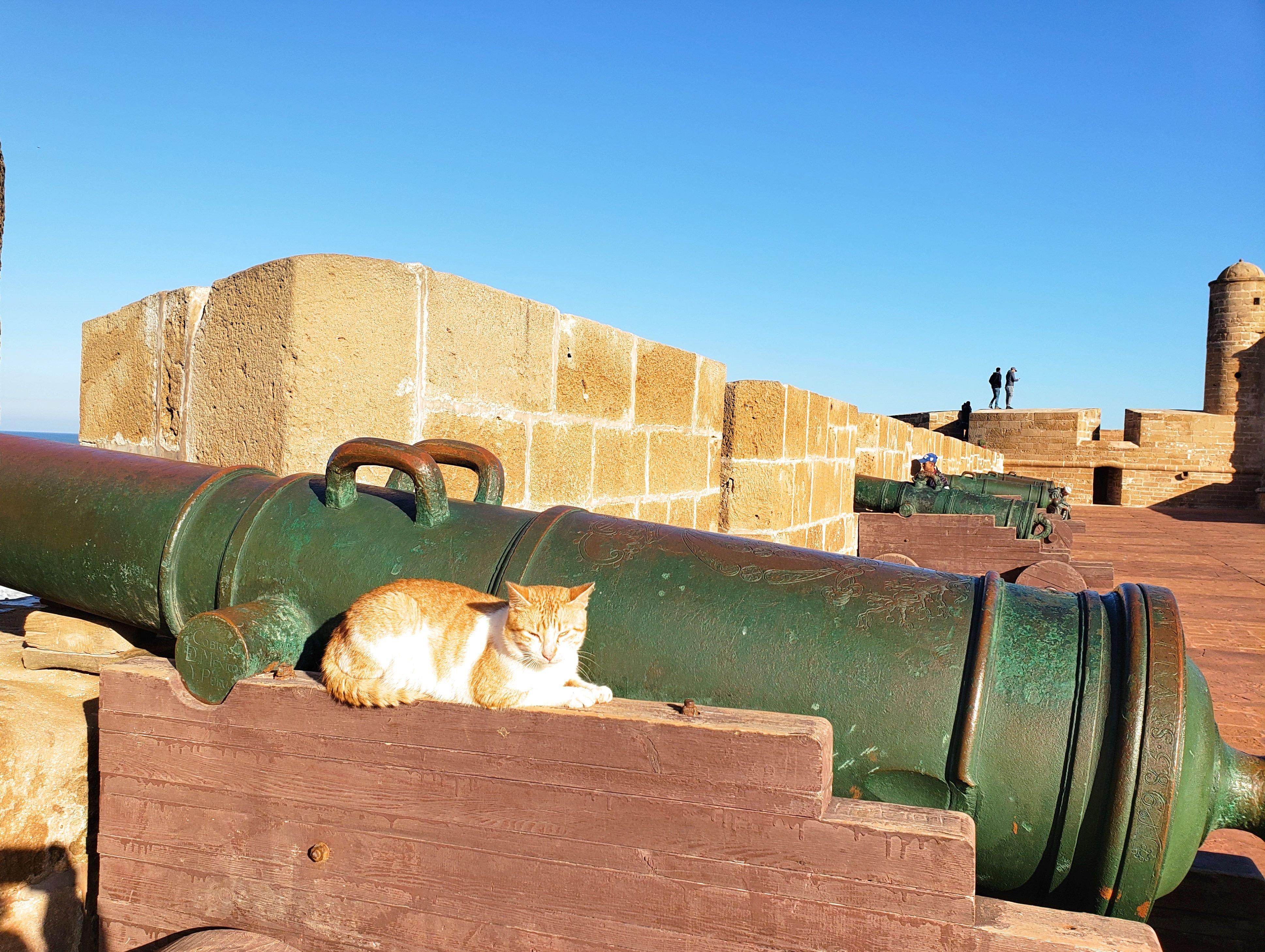 Essaouira voyage Maroc blog