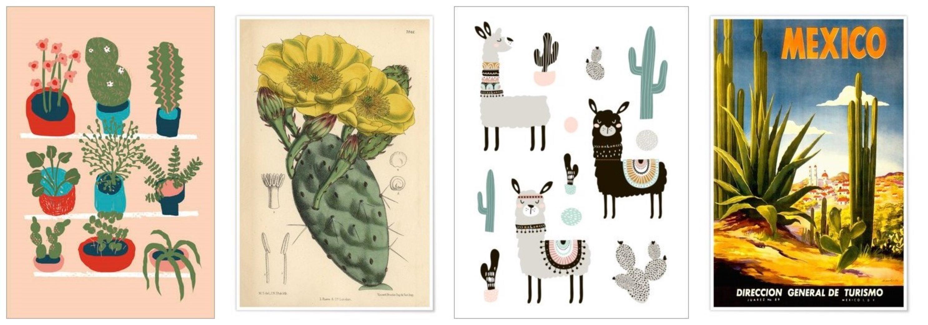 Posterlounge cactus