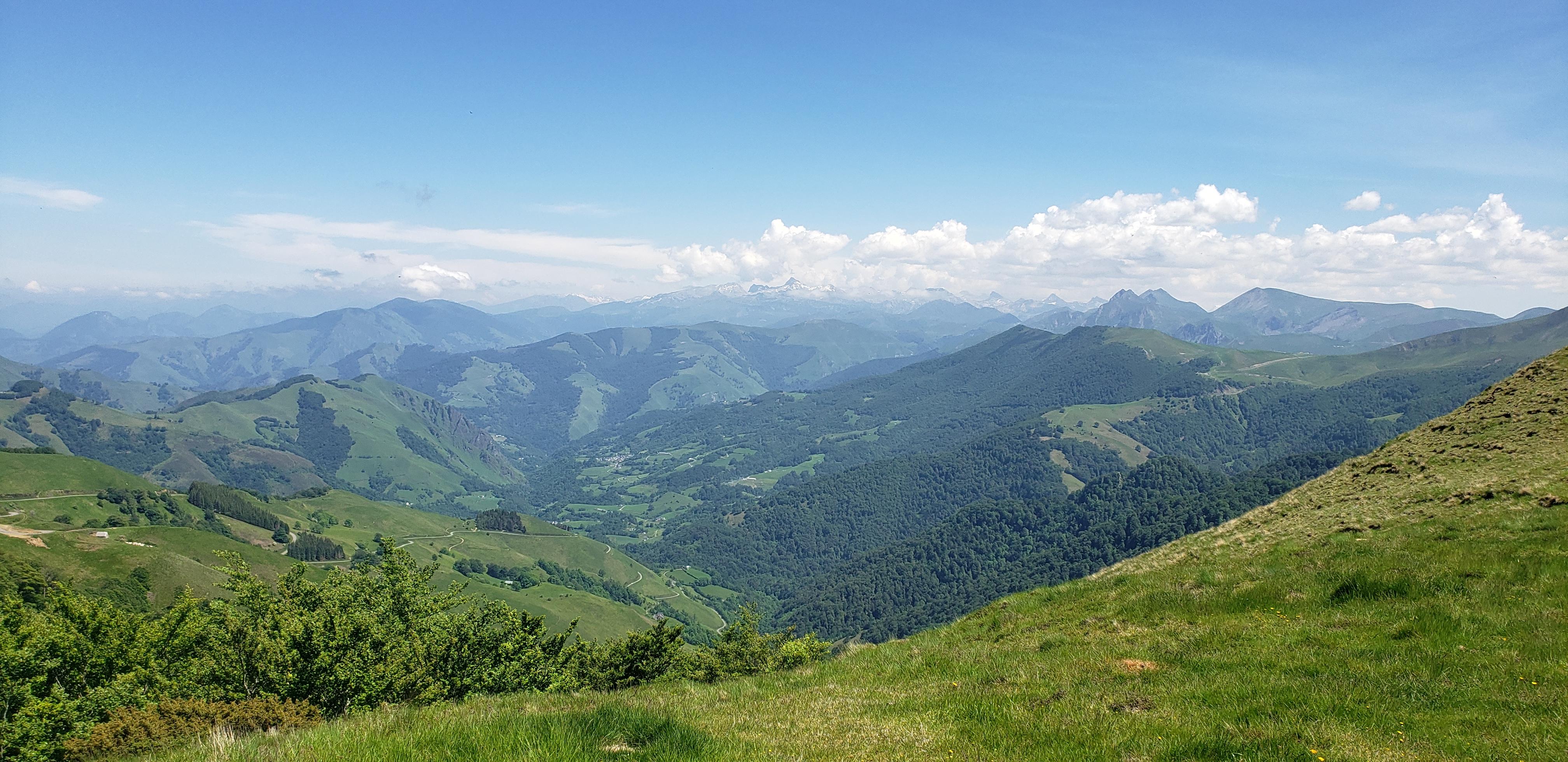 Pyrénées vue depuis la forêt d'Iraty